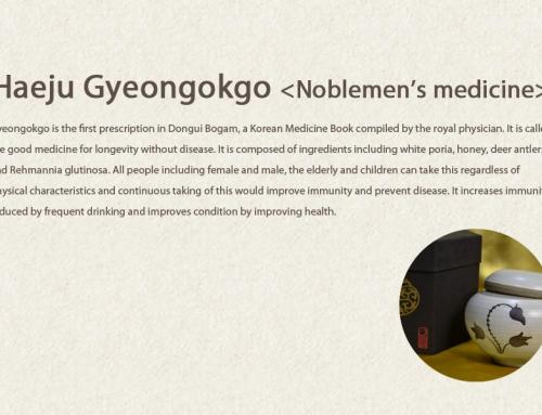 Haeju Gyeongokgo <Noblemen's medicine>